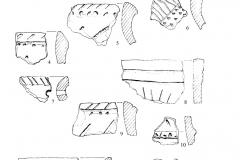 Рис. 1. Поселение Разнобрычка: фрагменты керамики воронежской (1–9) и поздней среднедонской катакомбной (10–12) культур