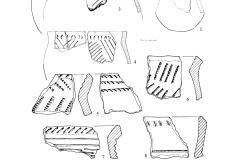 Рис. 3. Городище «Гривки»: керамика абашевской культуры (1) и абашевско-воронежского типа (2–10)