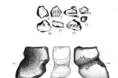 Рис. 3. Подъёмный материал с поселения Маянга-2