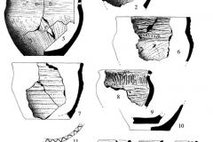 Рис. 4. Подъёмный материал с местонахождения Малый Красный Яр