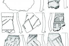 Рис. 7. Селище Белозерки IV. Пласт 3. Фрагменты лепной керамики