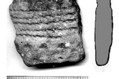 Рис. 13. Бечевник с. Сосновка. Фрагмент керамики средней бронзы