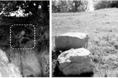Рис. 24. Концентрация литологического материала (в ближайшее время, вероятно, будет уничтожена абразией берега Волгоградского водохранилища   снимки 2008 г.)