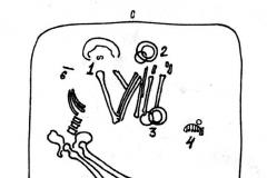 Рис. 7. План погребения 3 из Покровского кургана 15, юго-восточной группы (по И.В. Синицыну).