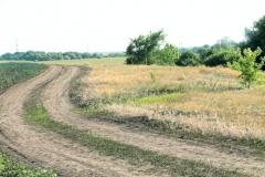 Исследования курганных могильников Криволучье-Ивановка I и Новопушкинское I.
