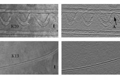 Рис. 3. Участки линейного декора гончарных сосудов (увеличено). I – обычный снимок, II – рельефный снимок. Стрелками обозначены участки волнообразного декора лежащего поверх параллельных прорезей
