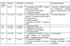 Материалы раскопок. Таблица.