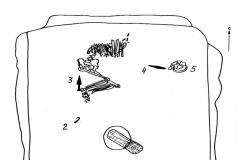 Рис. 11. Медяниково курган 2. План погребения 8.
