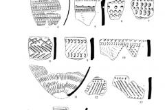 Рис. 2. Разнобрычка. Неолитическая керамика из раскопа 1