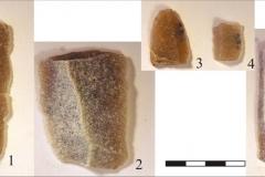 Рис. 6. Стоянка Непряхино, раскоп 2016 года. Горизонт Б-IБ, пластины