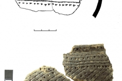 Рис. 11. Орошаемое. Раскоп 2. Керамика