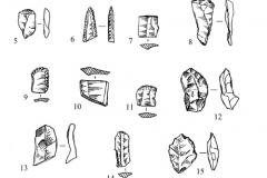 Рис. 16. Орошаемое. Находки из раскопа 2. 2, 18 – кварцит; остальное  – кремень