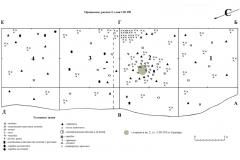 Рис. 6. Орошаемое. Планиграфия раскопа 2. Нижняя часть культурного слоя