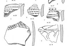 Рис. 24. Раскоп Алгай 1. Керамика из стратиграфического горизонта 6 (слой 22).