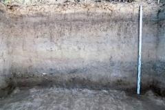 Рис. 17. Поселение Орошаемое. Стратиграфия раскопа Алгай 2 по линии Б-В