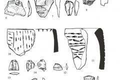 Рис. 5. Поселение Орошаемое, раскоп Орошаемое. Находки из среднего (прикаспий-ского) слоя (1-9) и нижнего (орловского) слоя (10-23). 1-9, 12-22 – кремень; 10, 11 – ке-рамика; 23 – раковина