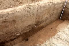 Рис. 8. Поселение Орошаемое, раскоп Алгай 1, вид с северо-запада