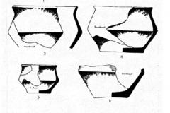 Рис. 8. Рассказань III. Лепная лощёная керамика из заполнения ям и культурного слоя: 1 – яма 104; 2 – яма 110; 3 – яма 74; 4 – яма 8; 5 – яма 81; 6-7 – культурный слой; 8 – яма 131
