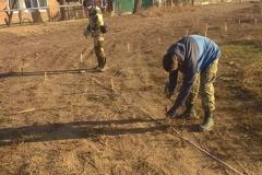 5. Разметка поквадратная раскопа
