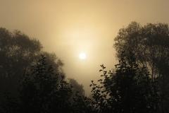 Восход над поселением Кузминка 4