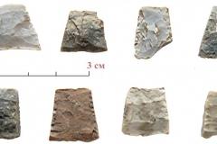 Каменные микролиты. Раскопки поселения Орошаемое.