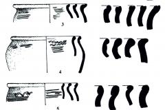 Рис. 4. Керамика городища Никольевка (1-5) и поселения Никольевка II (6). Тип I (1-2); Тип II (3); Тип III (4); Тип IV (5); Тип V (6)