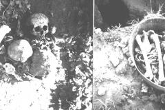 Рис. 2. Непреднамеренно разрушенные жителями захоронения посреди водоема на схеме А.А. Кроткова