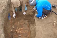 5. Расчистка археологического погребения