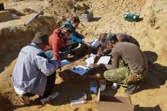 6. Расчистка и первичная консервация археологического материала