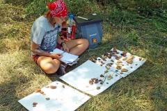7. Полевая камеральная обработка археологического материала