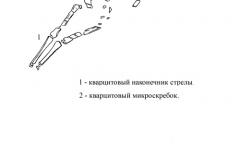 Рис. 20. Разнобрычка. Северная часть раскопа I 2008 года