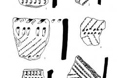 Рис. 5. Разнобрычка. Накольчатая керамика (1-10), изделия из кремня (11-15) и кварцита (16)
