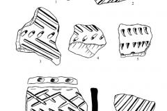 Рис. 9. Разнобрычка. Керамика с ямчатым (1-4, 6-9) и накольчатым (5) орнаментом