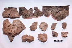 Развал керамического горшка катакомбной культуры