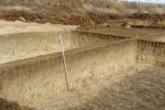 Рис. 19. Примеры стратиграфии раскопа на поселении Бузинка II
