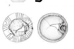 Рис. 10. Типки 2, курган 1, погребение 2. 1 – кувшин глиняный; 2 – курильница глиняная