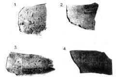 Рис. 1. Фрагменты исследованной керамики трипольской культуры.