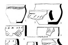 Рис. 5. Сусканская (1-8) и атабаевско-межовская (9-14) керамика.