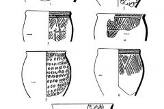Рис. 3. Никольевка. Керамика воронежской культуры (1-8)
