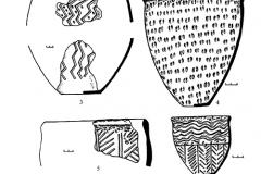Рис. 4. Никольевка. Керамика воронежской культуры (1-7)