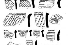 Рис. 6. Никольевка. Керамика воронежской (1-8, 10-12, 14-17) и катакомбной (9, 13) культур