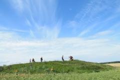 Начало археологических работ в Самарской области.