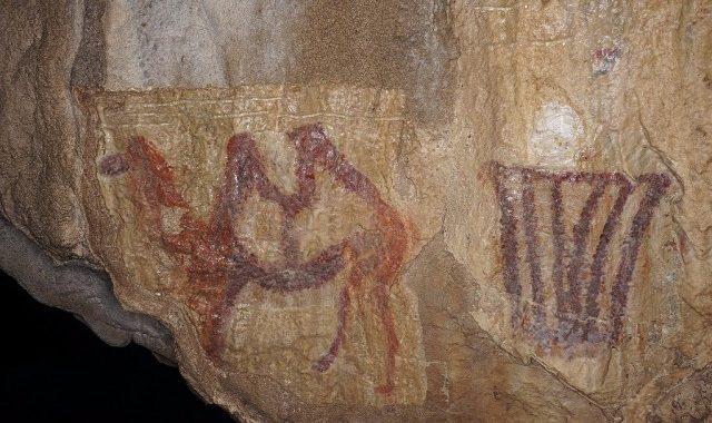 верблюд в Каповой пещере