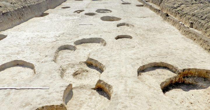 Рис. VII. Поселение Чекон. Раскоп 2, северная часть. Вид с северо-востока